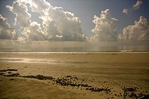 218px-Mudflat_and_clouds_in_Sundarbans